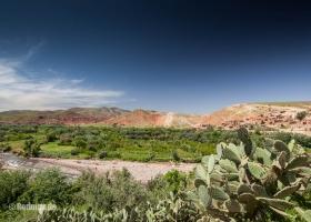 Das grüne Marokko