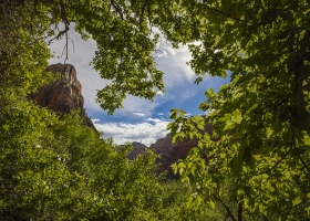 USA Zion Nationalpark