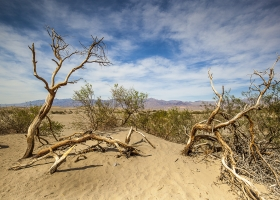USA Death Valley Nationalpark
