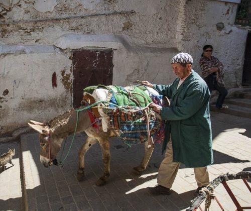 Esel als Transportmittel