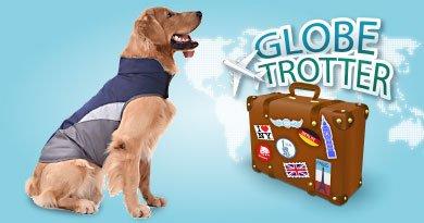Reiseartikel für den Hund